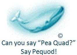 Say Pequod